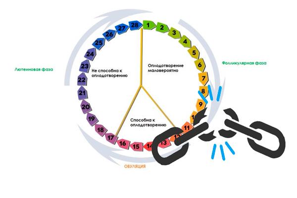 Нарушение менструального цикла, как главный симптом МФЯ