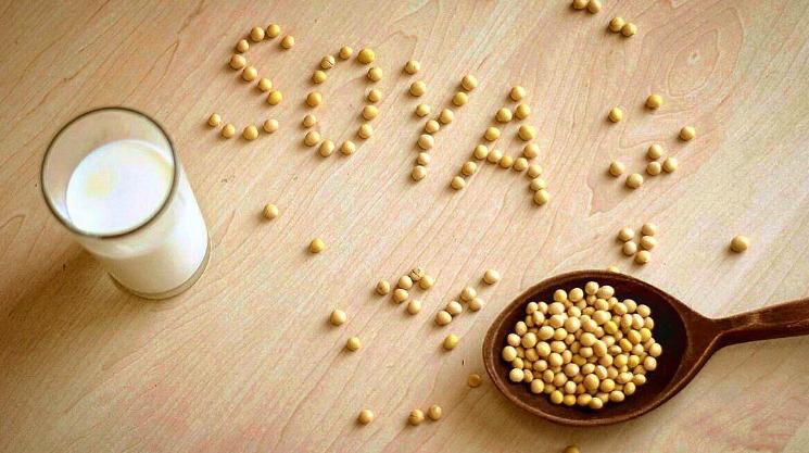 Соя в детском питании - какую и когда давать