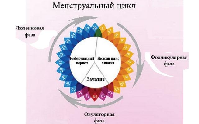 Расстройства менструального цикла