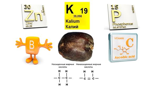 Полезные вещества входящие в состав плода мохилхин