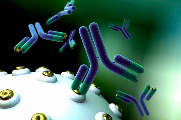 Выработка антиспермальных тел из-за простатита
