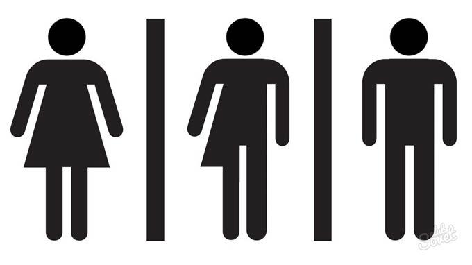 ложный мужской гермафродитизм