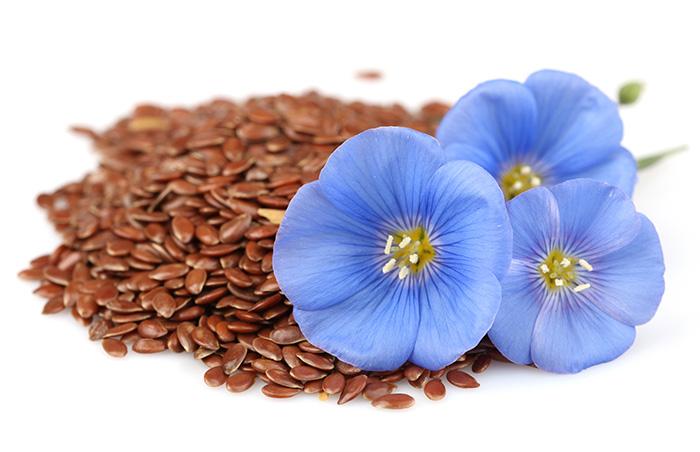 Лен (семена) описание и полезные свойства. Применение в кулинарии и ...