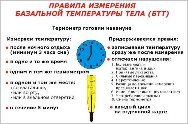 как измерить базальную температуру