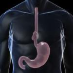 пищевод болезни и симптомы