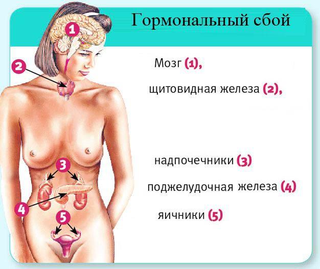 гормональный сбой у женщины
