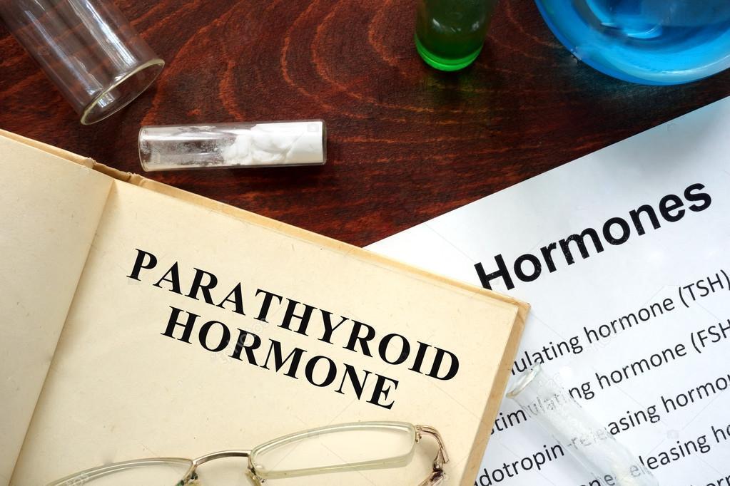 Паратиреоидный гормон (Pth)