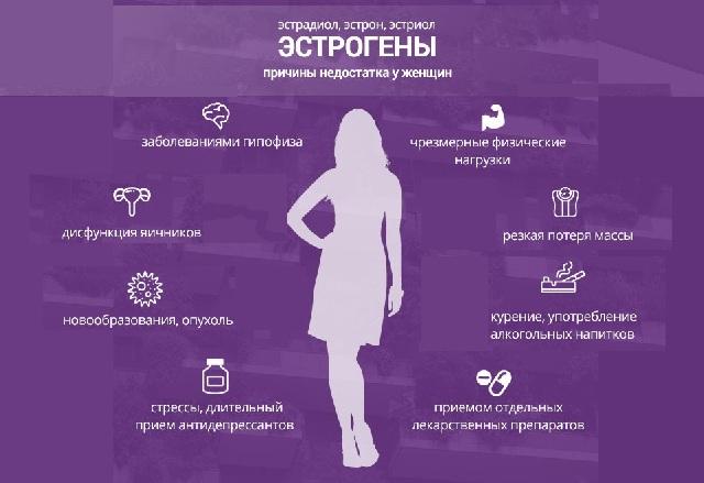 Функции эстрогена