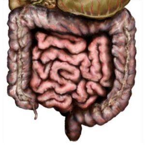 пневматоз толстой кишки