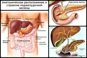 Причины появления камней в поджелудочной железе