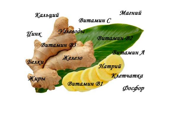 Составные элементы корня имбиря