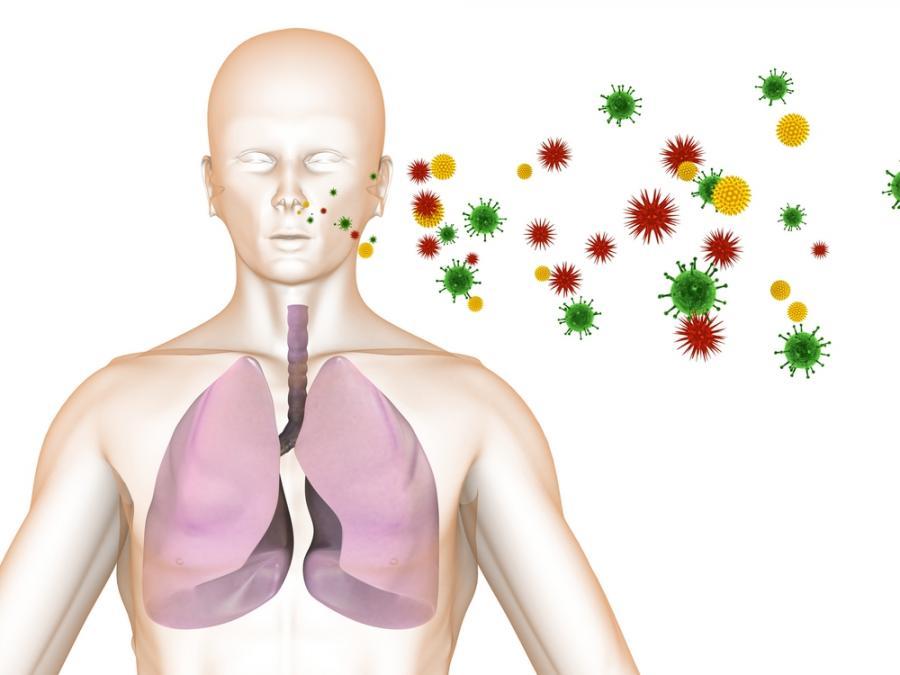 Способы передачи туберкулеза