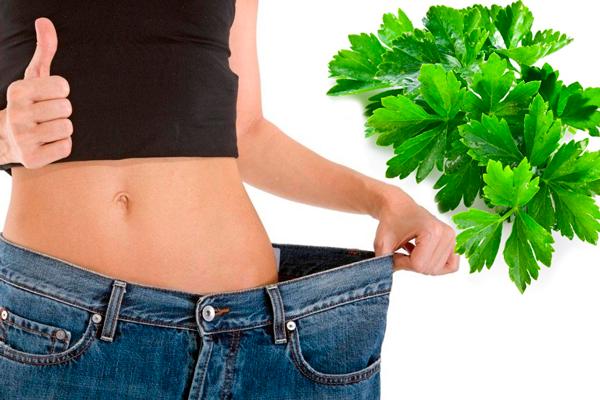 Снижение веса в следствии регулярного потребления петрушки