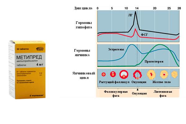 Нормализация гормонального фона женщины препаратом Метипред