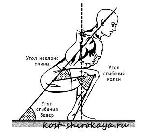 Базовые упражнения, присед, становая, жим лежа.Как сделать талию тонкой