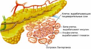 лечение поджелудочной железы таблетки