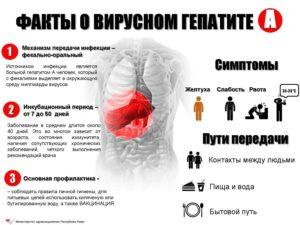 Факты о вирусном гепатите