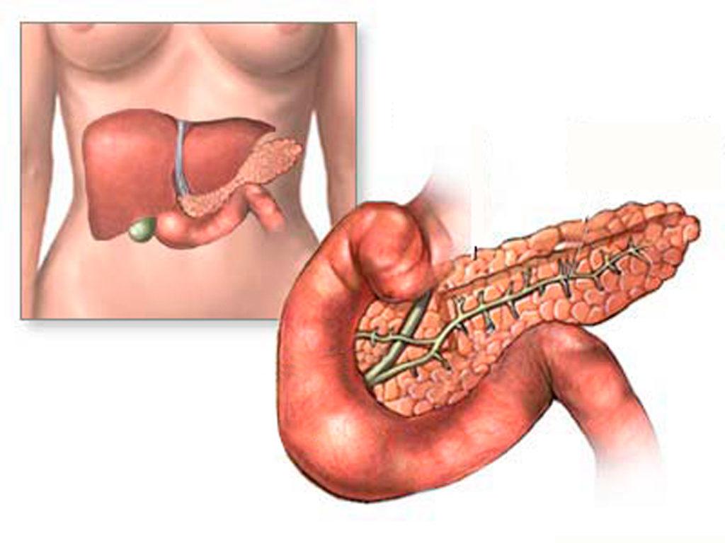 диффузные изменения в печени и поджелудочной железе