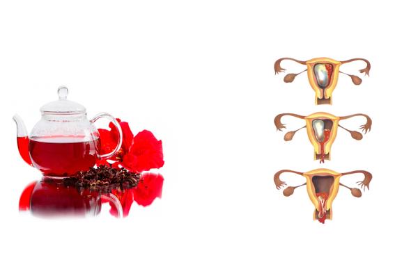 Возможное отторжение плода в следствии употребления чая какраде