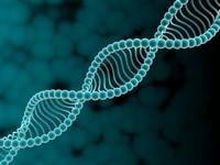 Генетическая наследственность