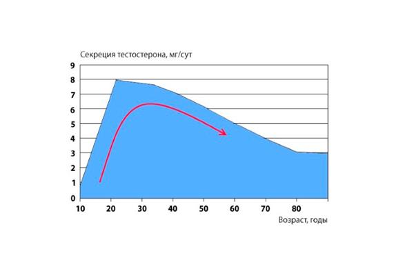 График выработки тестостерона в зависимости от возраста мужчины