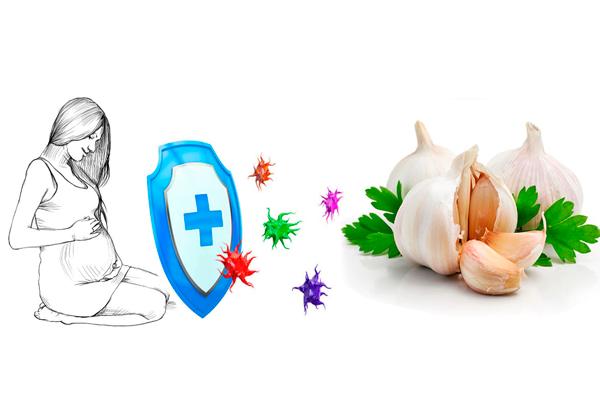 Укрепление иммунитета при беременности употребляя чеснок