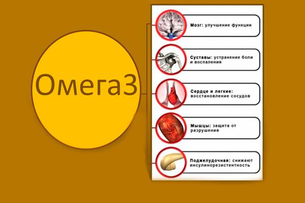 Полезные свойства жирной кислоты Омега 3
