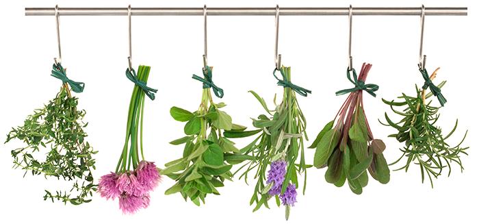 Травы для отваров при лечение народными средствами варикоцелей