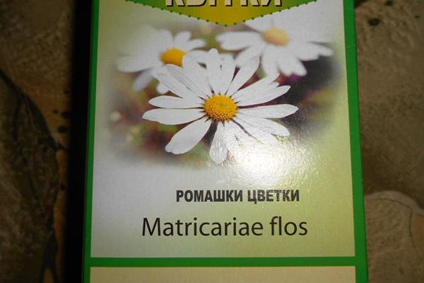 Сбор ромашки для приготовления настоя для устранения воспалительных процессов в горле