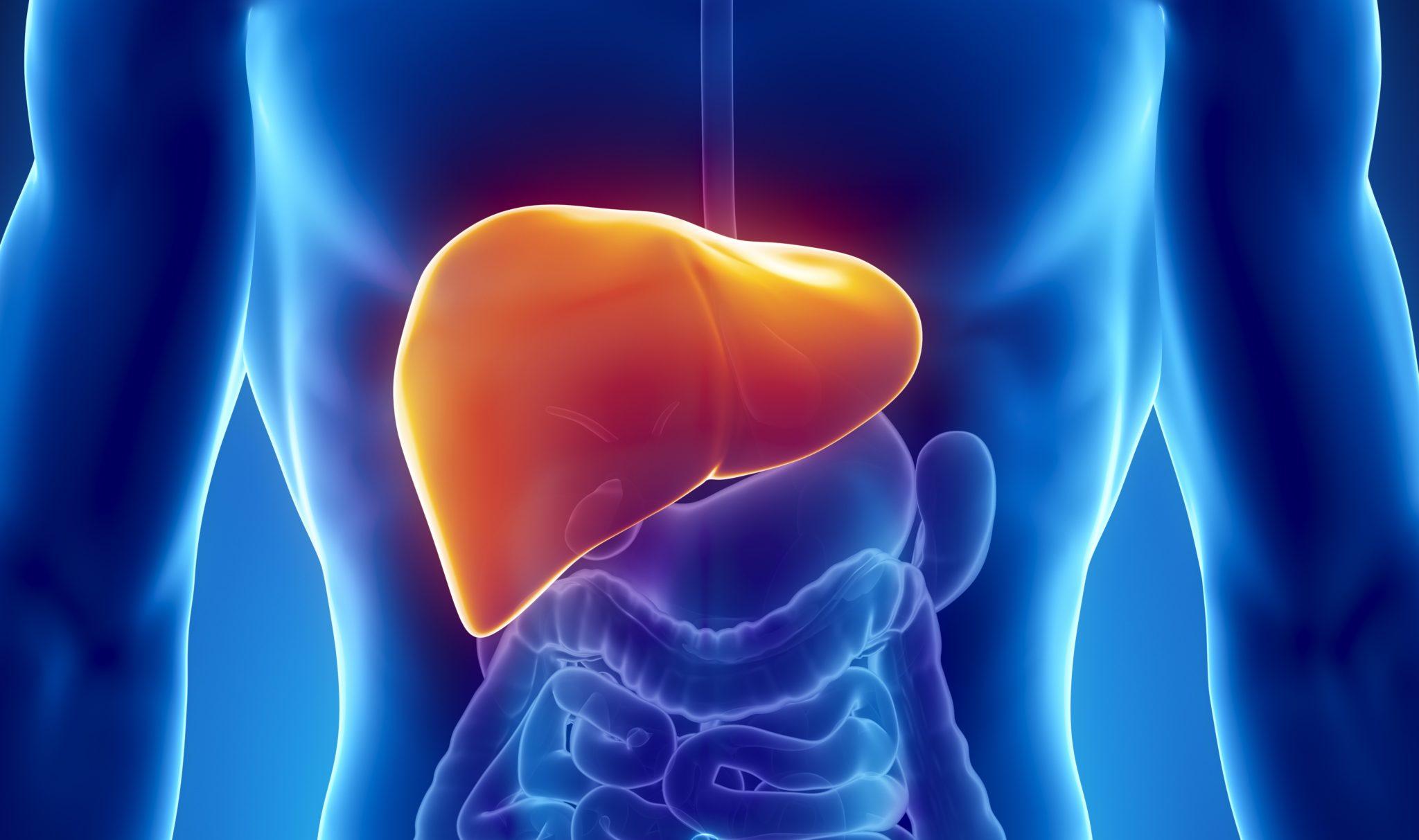 Воспаление печени: симптомы, причины, диагностика и лечение
