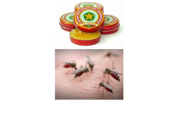 Применение мази Звездочка при укусе насекомых