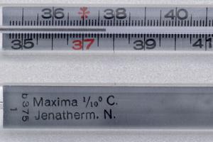 температура 37 при беременности