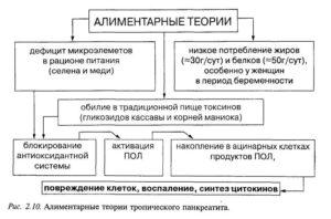 Алиментарные теории