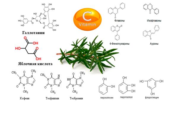 Состав полезных веществ измагена