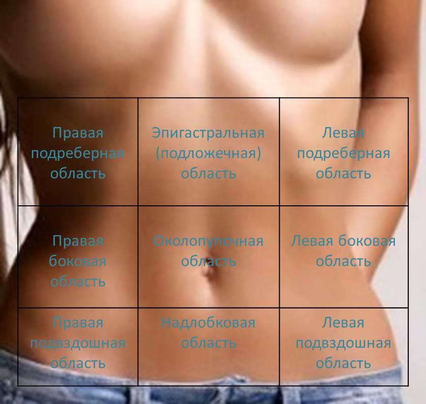 области тела