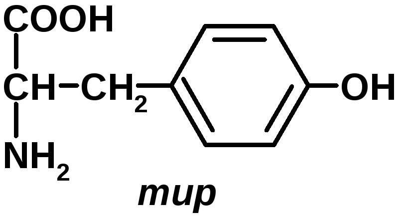 Характеристика гормона Т3