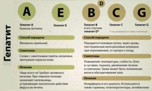 информация о гепатите