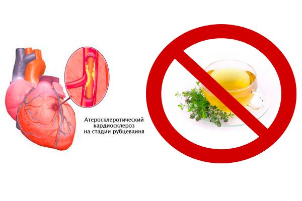 Запрет на прием настоя чабреца при кардиосклерозе